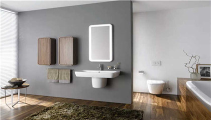 卫生间干湿分离的设计方案